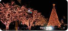 led christmas/tree lights