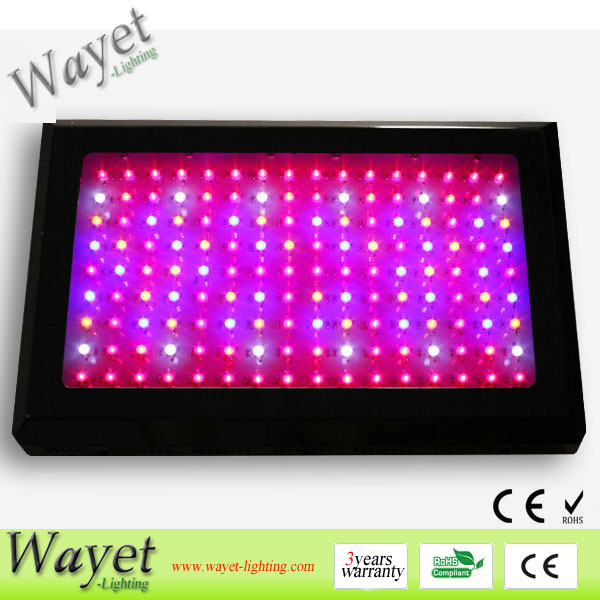300w LED grow light (3w LED chip)