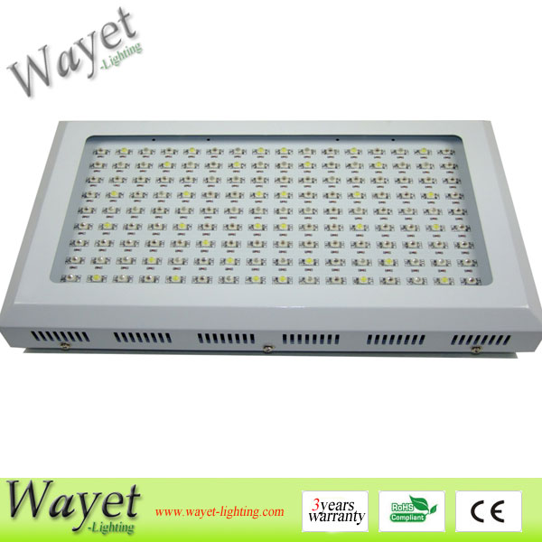 144X2W LED Grow Light
