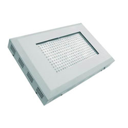 300w LED Grow Light(2w LED chip)