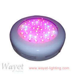 90w UFO LED grow light (2w LED chip)